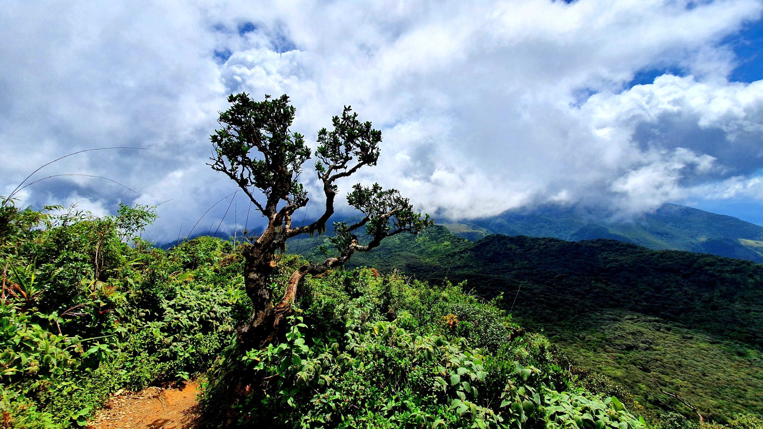 Knuckles Range Sri Lanka
