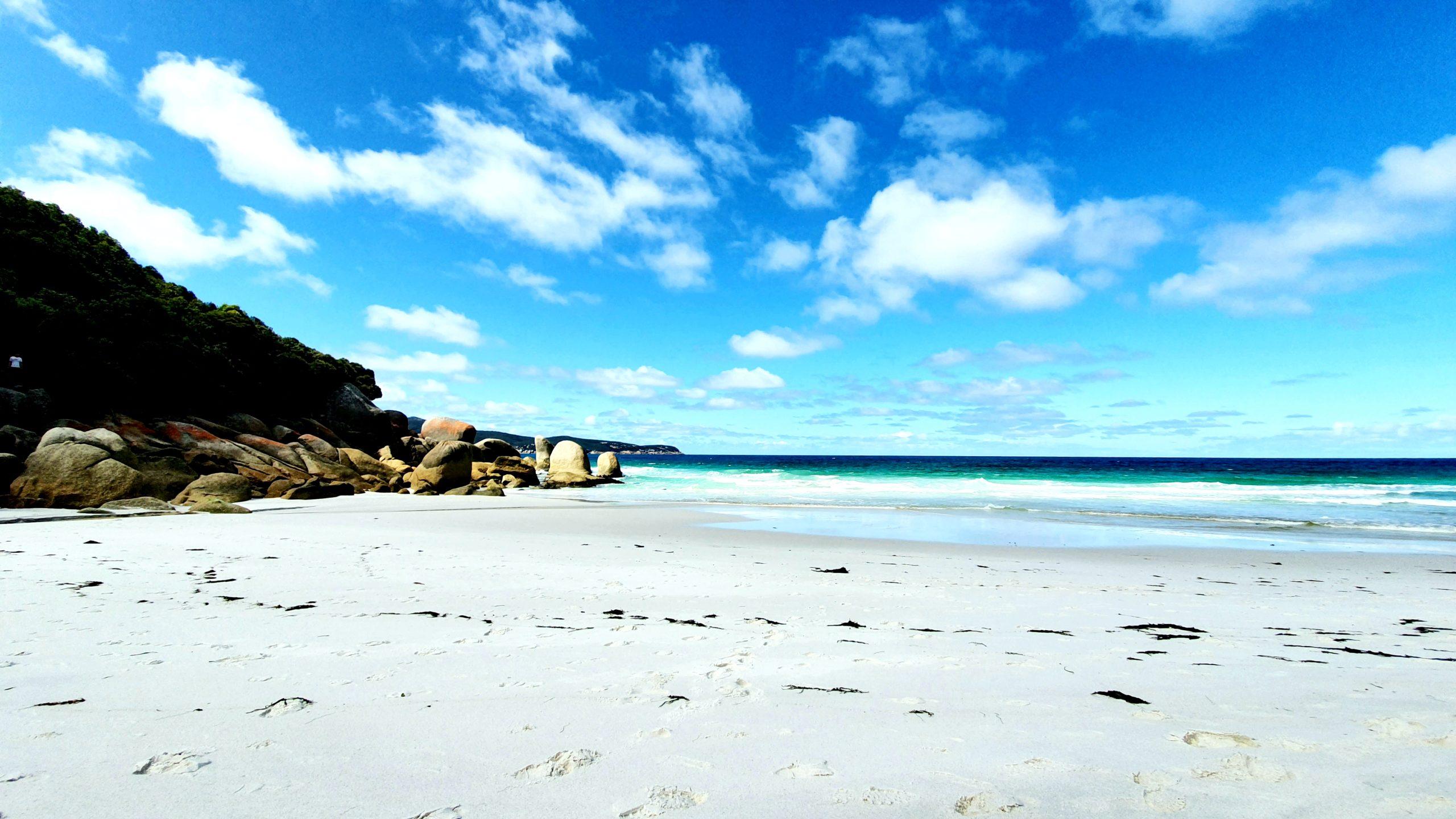 Waterloo Bay plaża