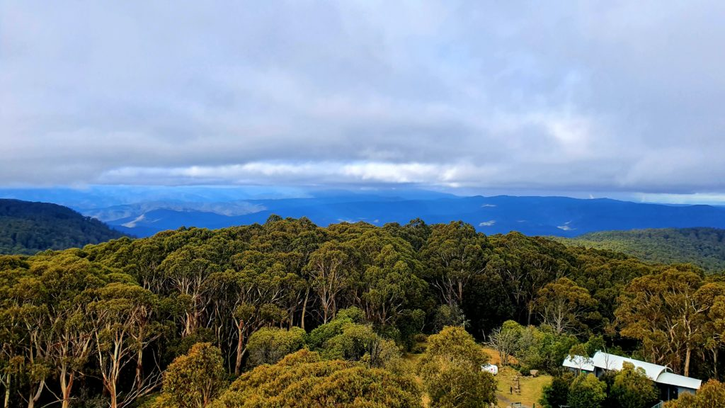 Mt Donna Buang Walking Track near Melbourne