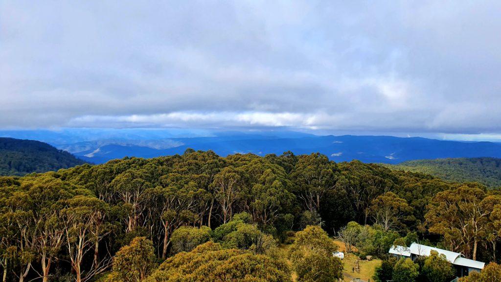 Mt Donna Buang szlaki piesze Melbourne