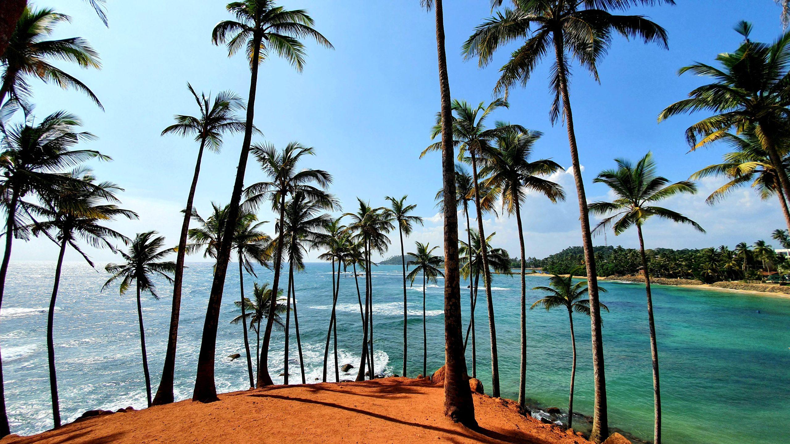Coconut Tree Hill południowe wybrzeże Sri Lanka