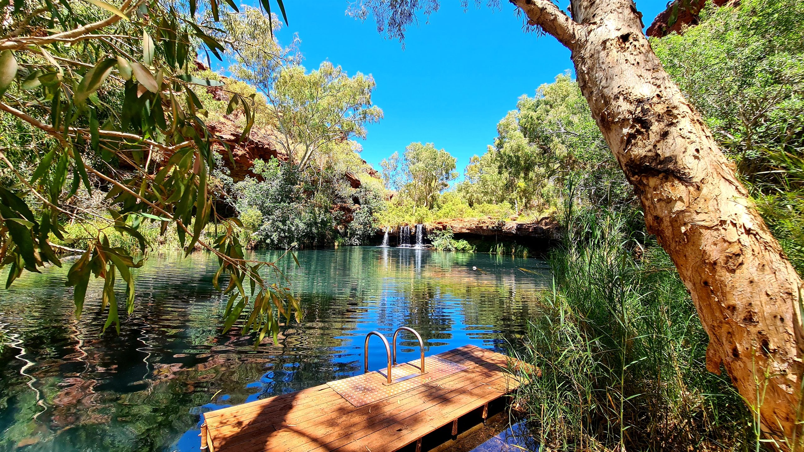 Park Narodowy Karijini Fern Pool