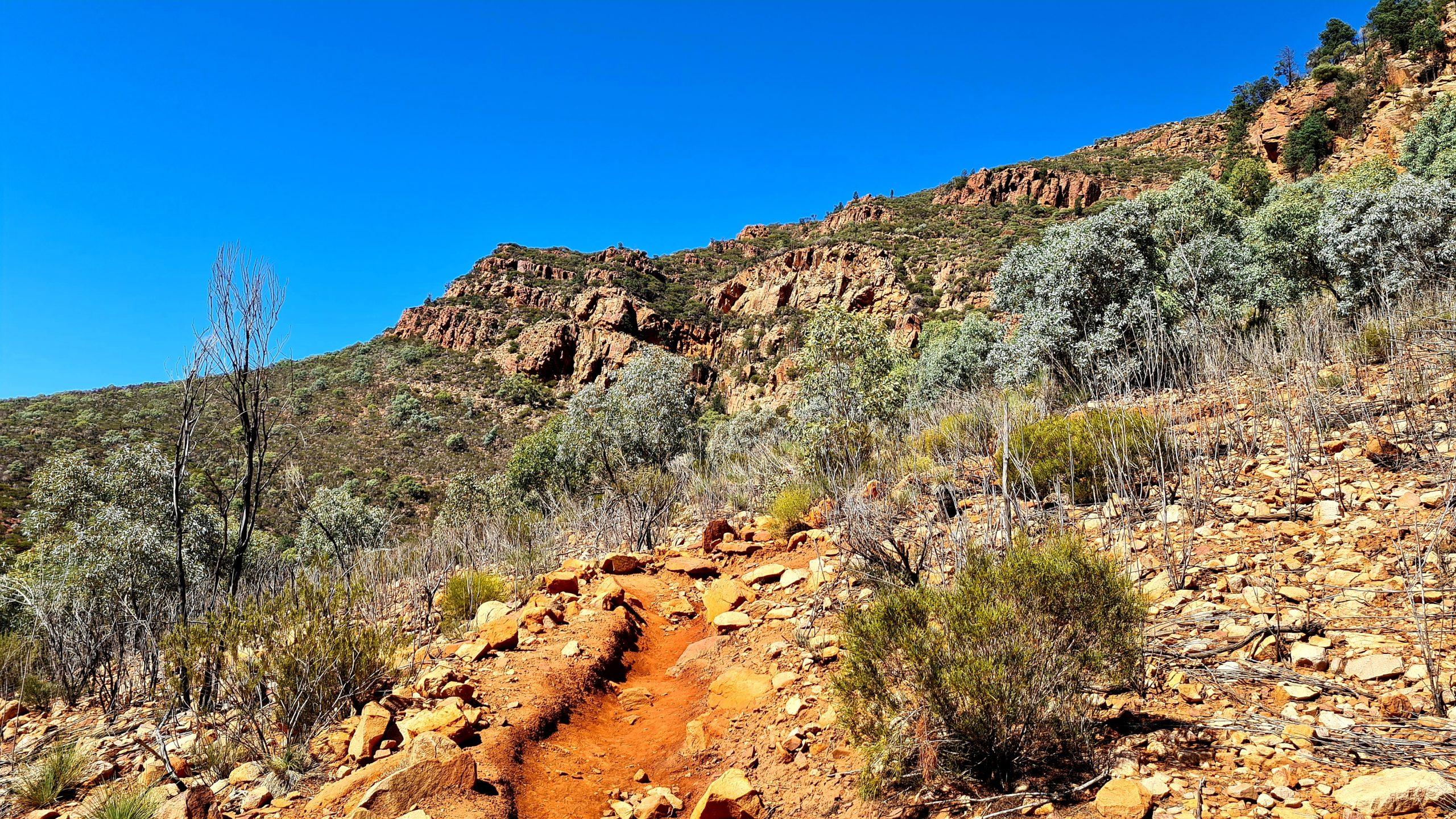 Walking trails in the Flinders Ranges Mount Ohlssen Bagge