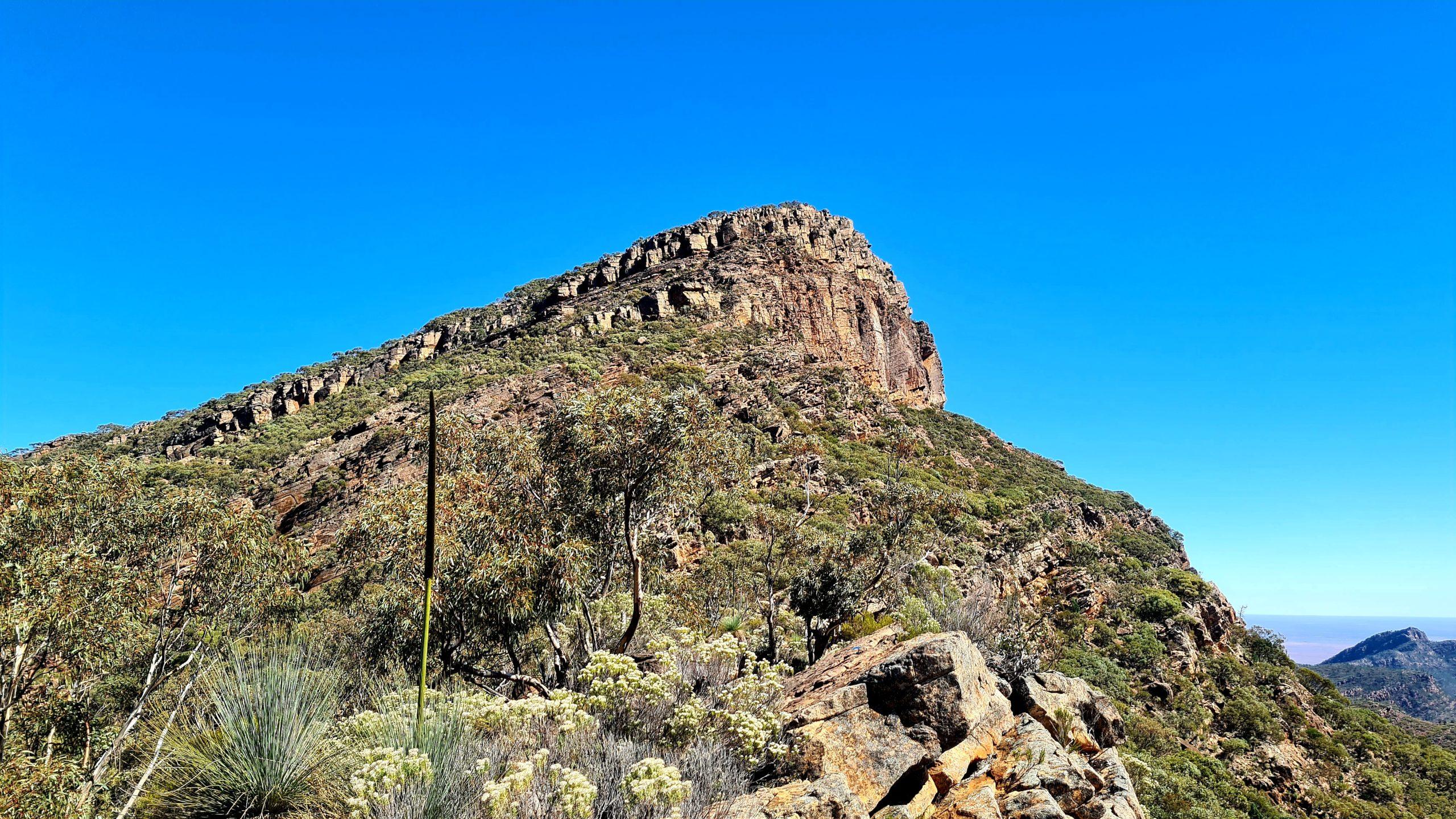 Walking trails in the Flinders Ranges St Mary Peak