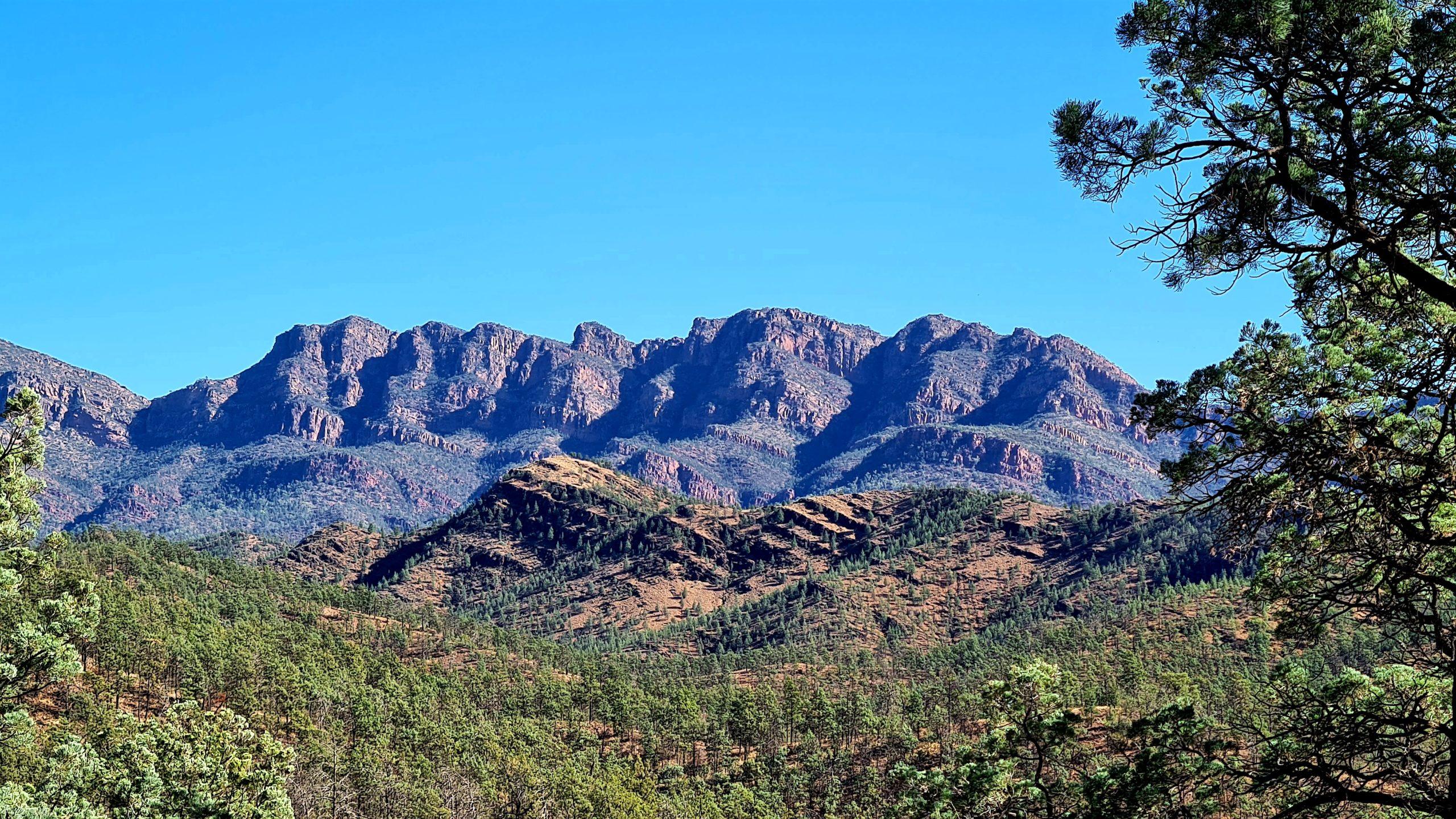 Szlaki piesze w Flinders Ranges Wilcolo Creek