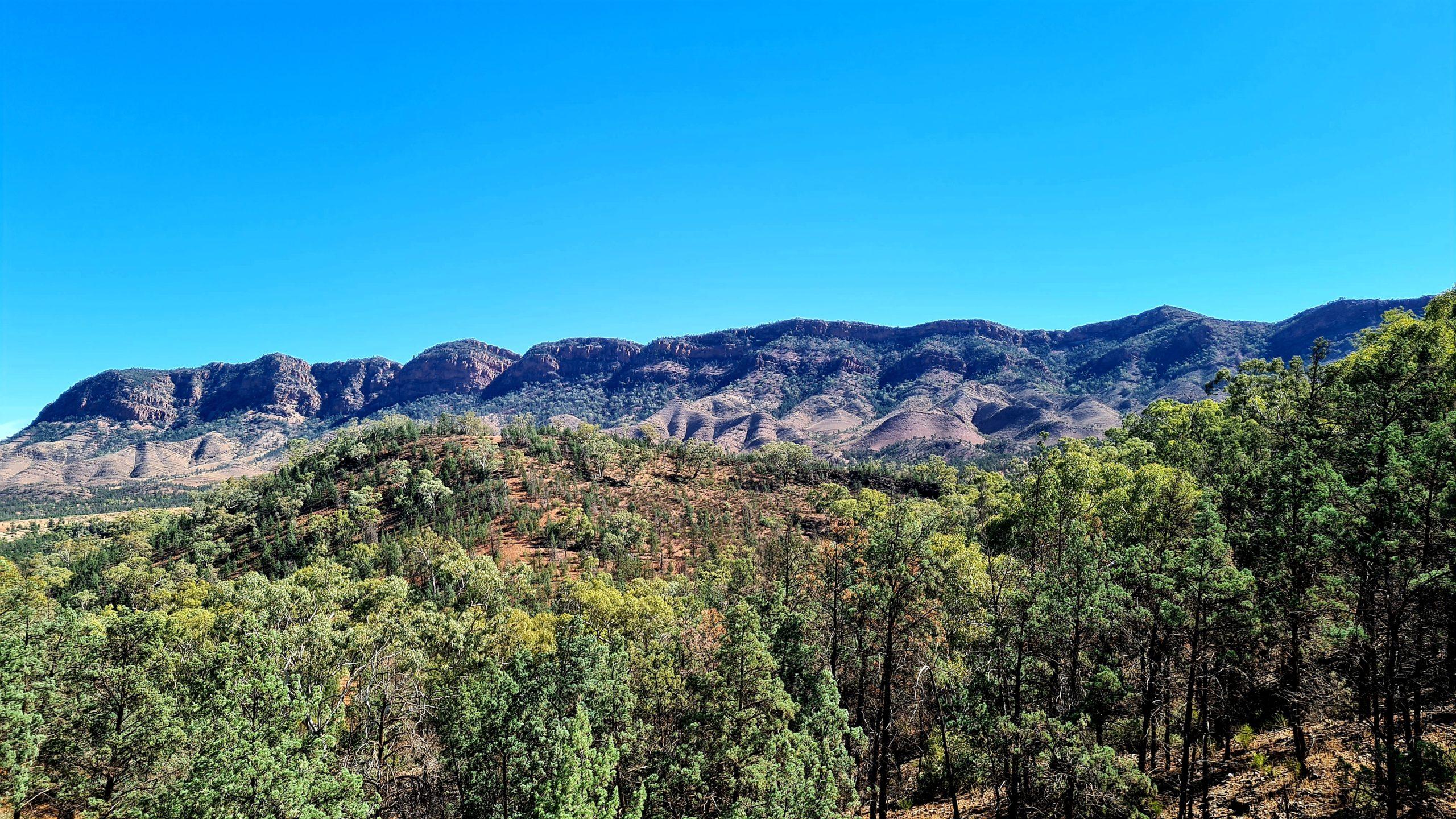 Szlaki piesze w Flinders Ranges Yuluna Hike