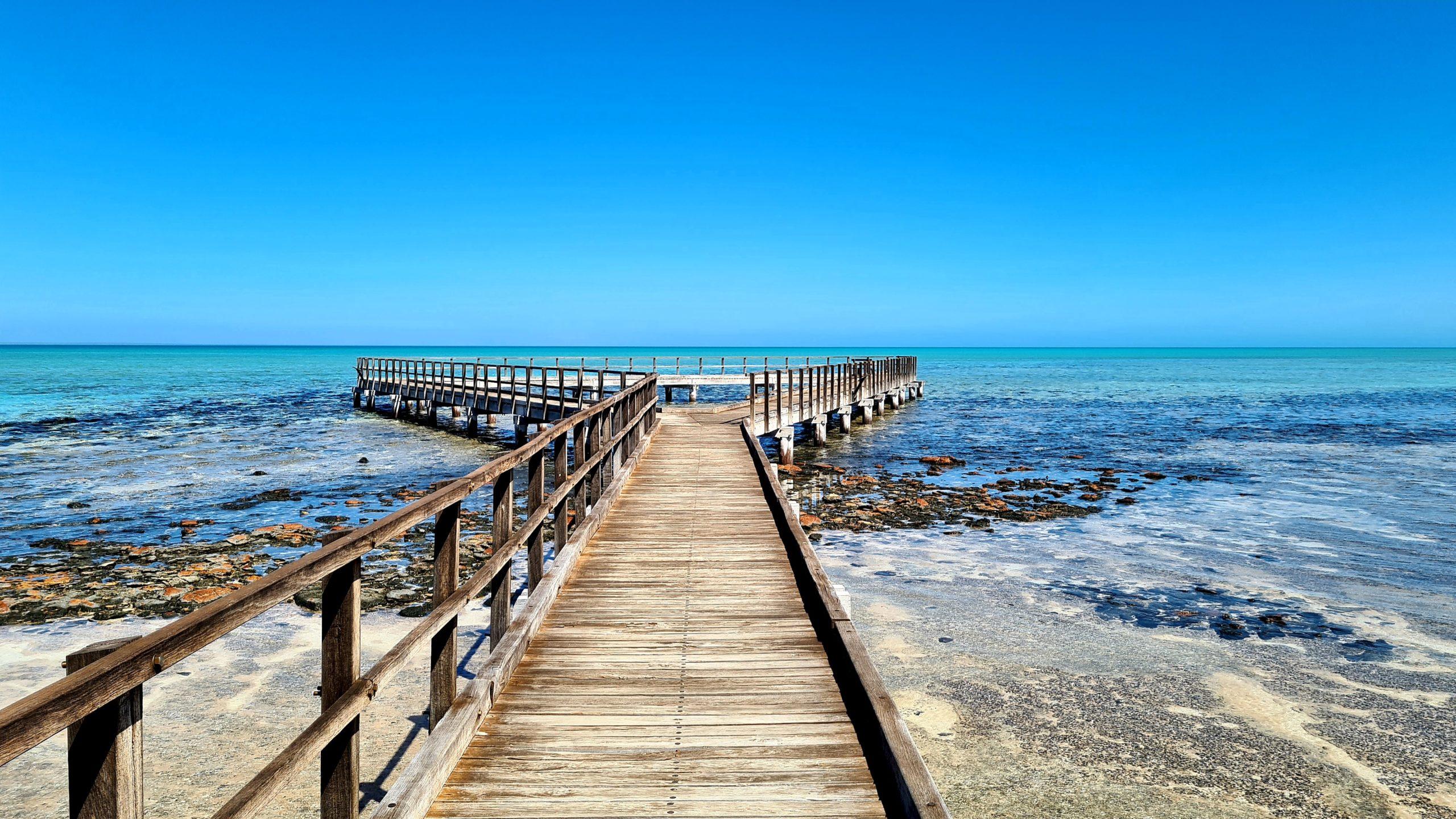 Zatoka Rekina w Zachodniej Australii Hamelin Pool