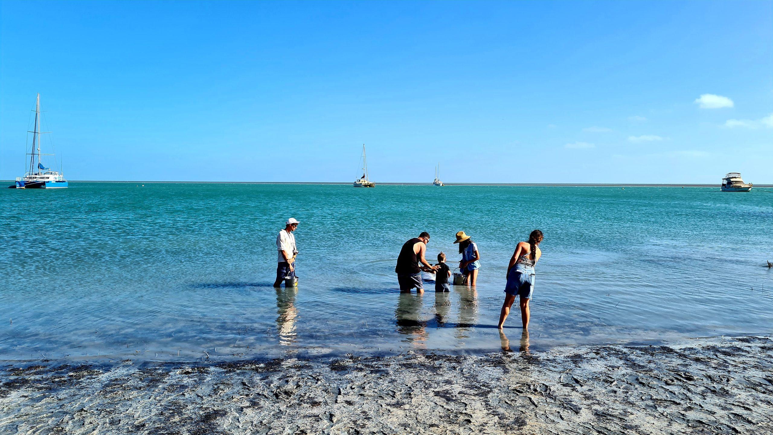 Shark Bay in Western Australia