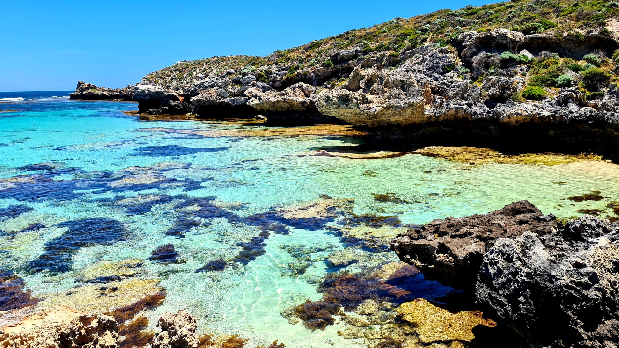 Two-day Rottnest Island itinerary