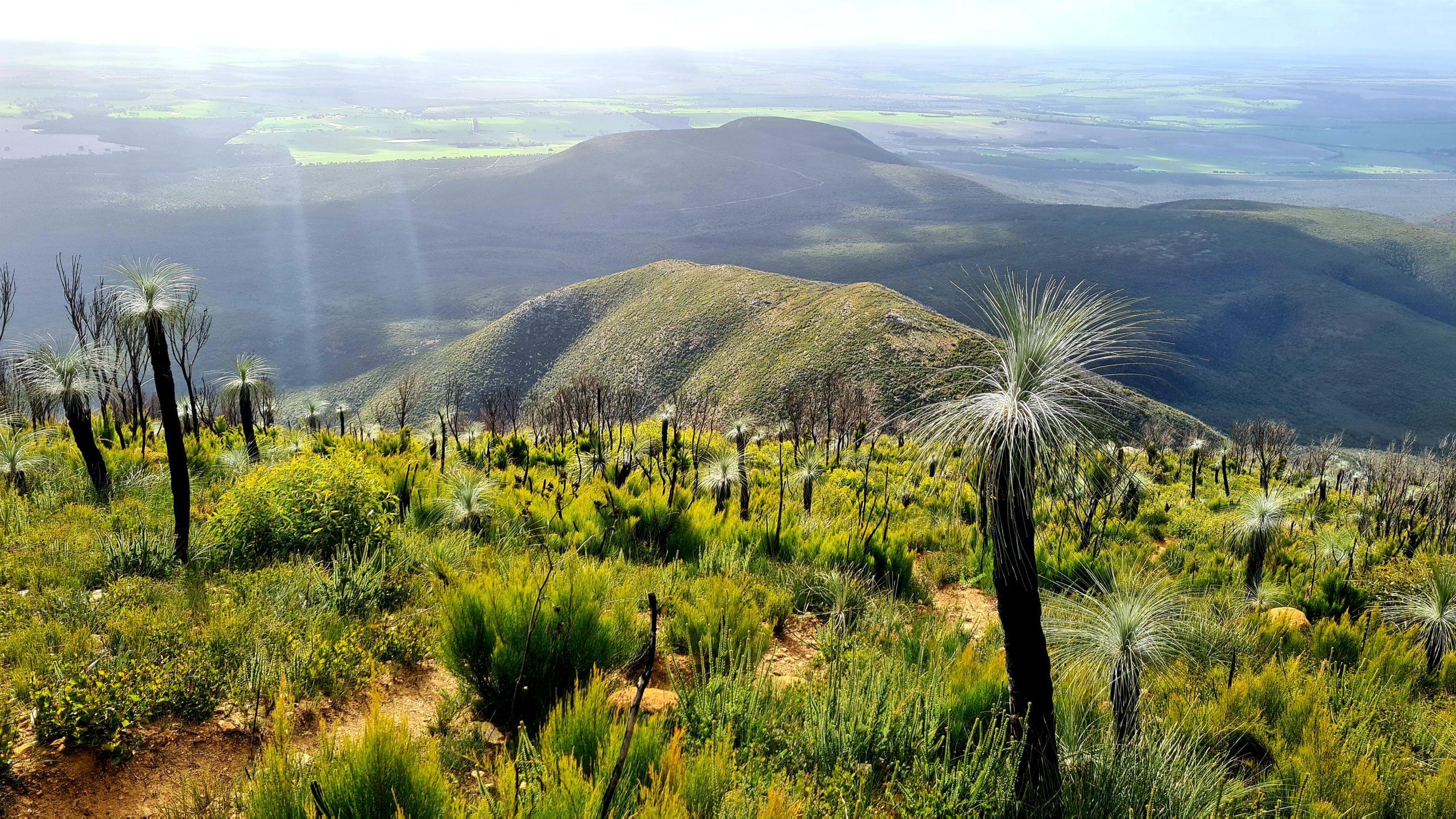 Western Australia hikes